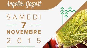 Fête de la Châtaigne à Argelès-Gazost le 7 novembre